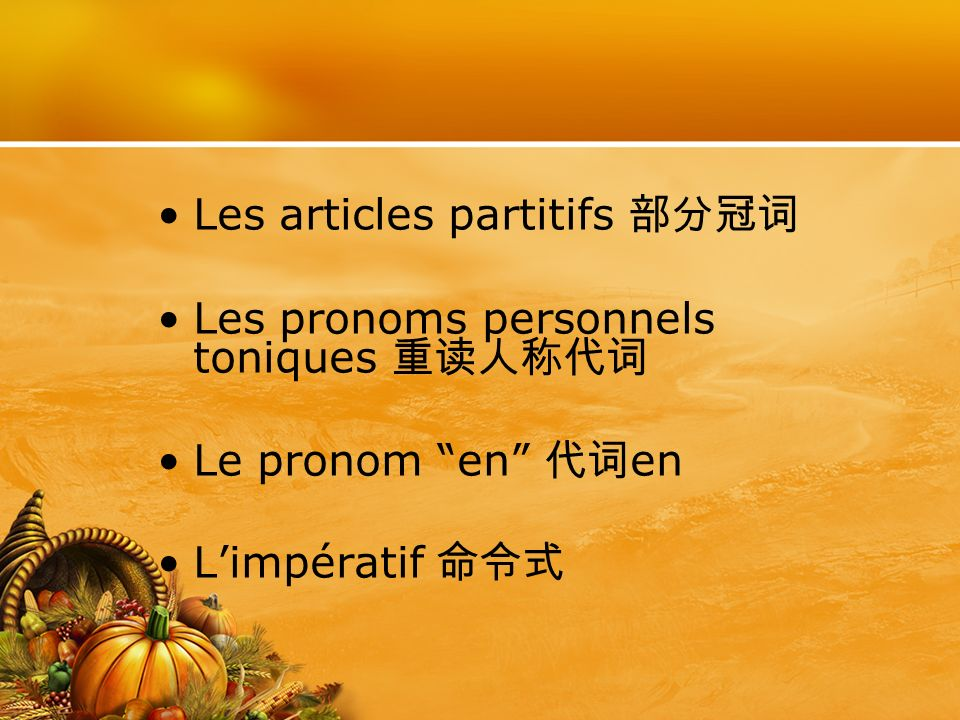 Les articles partitifs 部分冠词