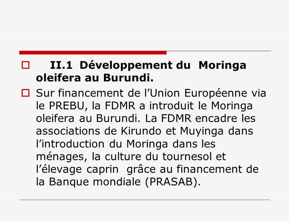 II.1 Développement du Moringa oleifera au Burundi.