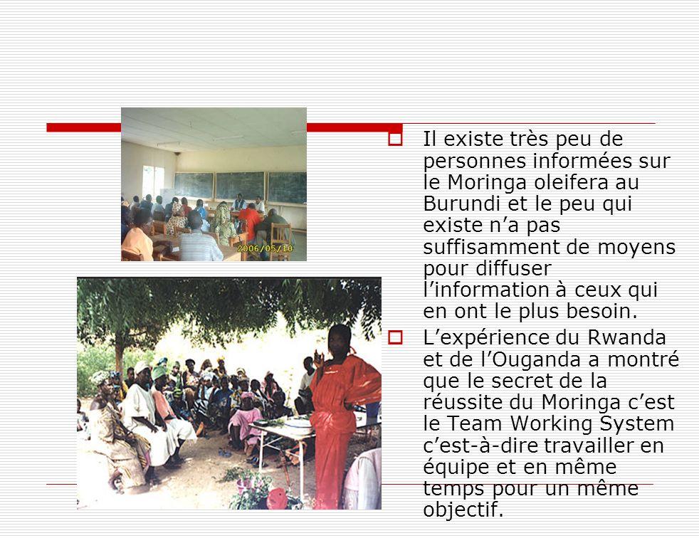 Il existe très peu de personnes informées sur le Moringa oleifera au Burundi et le peu qui existe n'a pas suffisamment de moyens pour diffuser l'information à ceux qui en ont le plus besoin.