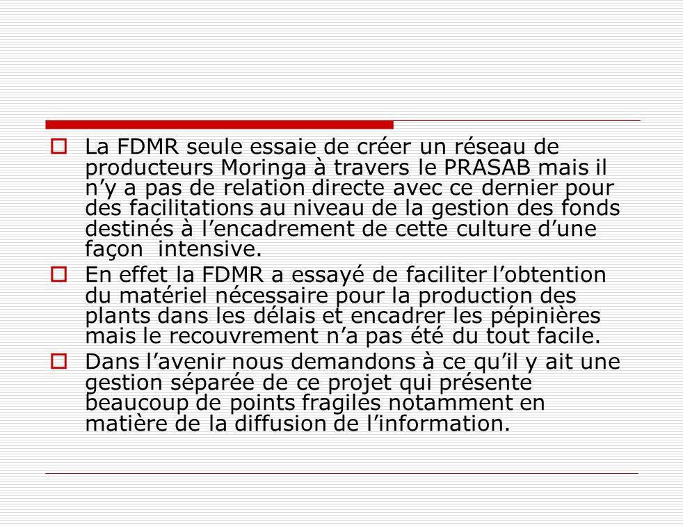La FDMR seule essaie de créer un réseau de producteurs Moringa à travers le PRASAB mais il n'y a pas de relation directe avec ce dernier pour des facilitations au niveau de la gestion des fonds destinés à l'encadrement de cette culture d'une façon intensive.