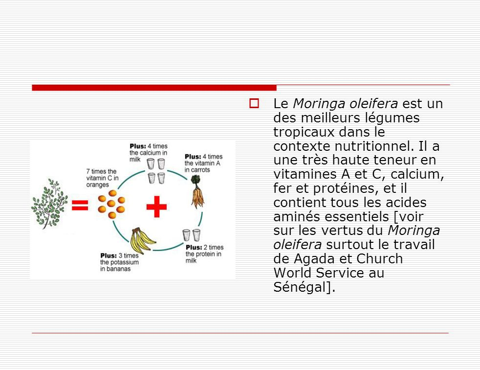 Le Moringa oleifera est un des meilleurs légumes tropicaux dans le contexte nutritionnel.