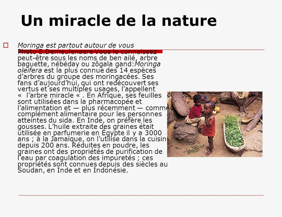 Un miracle de la nature