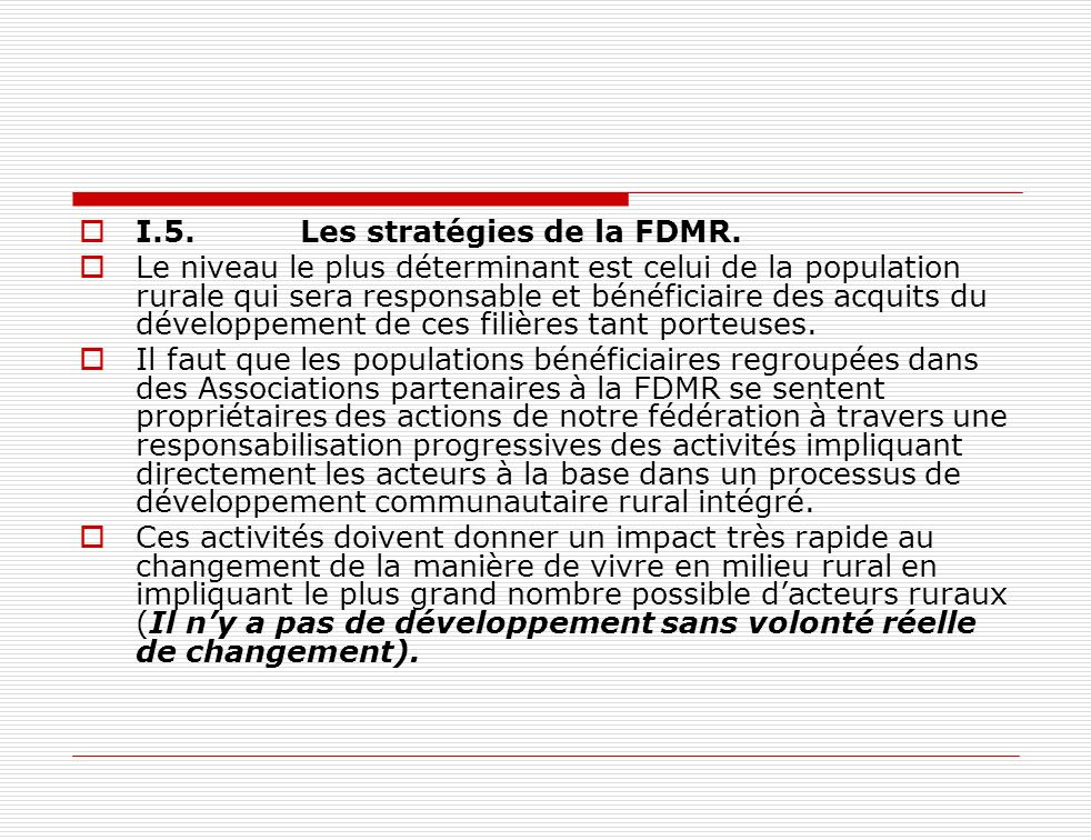 I.5. Les stratégies de la FDMR.