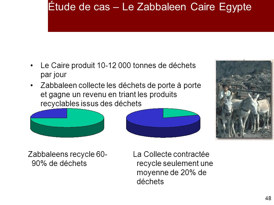 Étude de cas – Le Zabbaleen Caire Egypte
