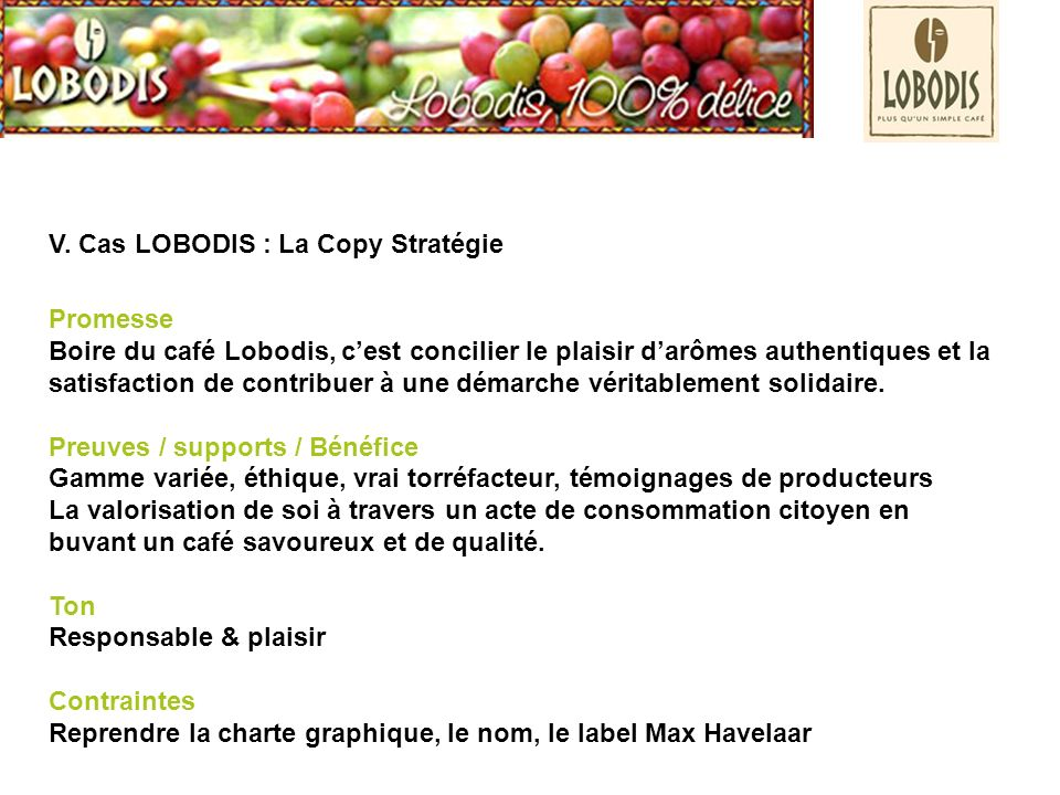 V. Cas LOBODIS : La Copy Stratégie