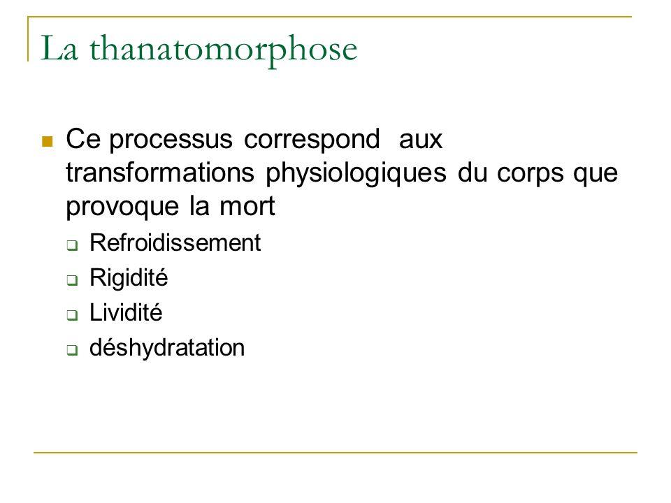 La thanatomorphose Ce processus correspond aux transformations physiologiques du corps que provoque la mort.