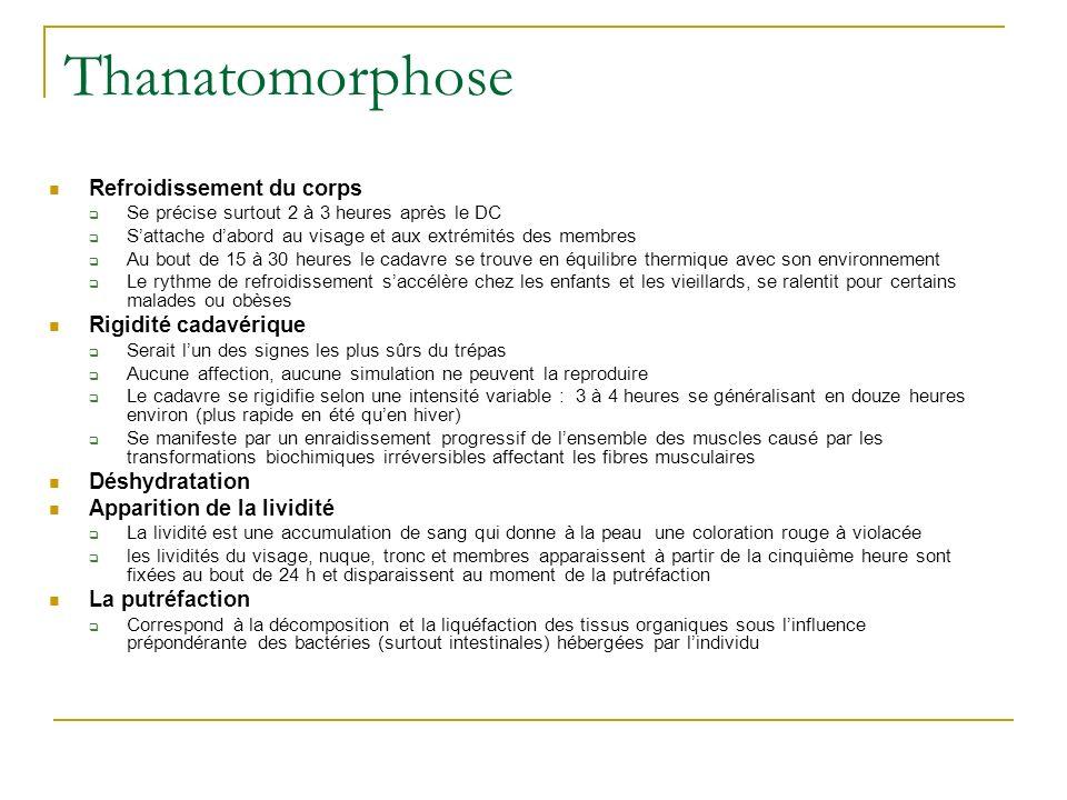 Thanatomorphose Refroidissement du corps Rigidité cadavérique