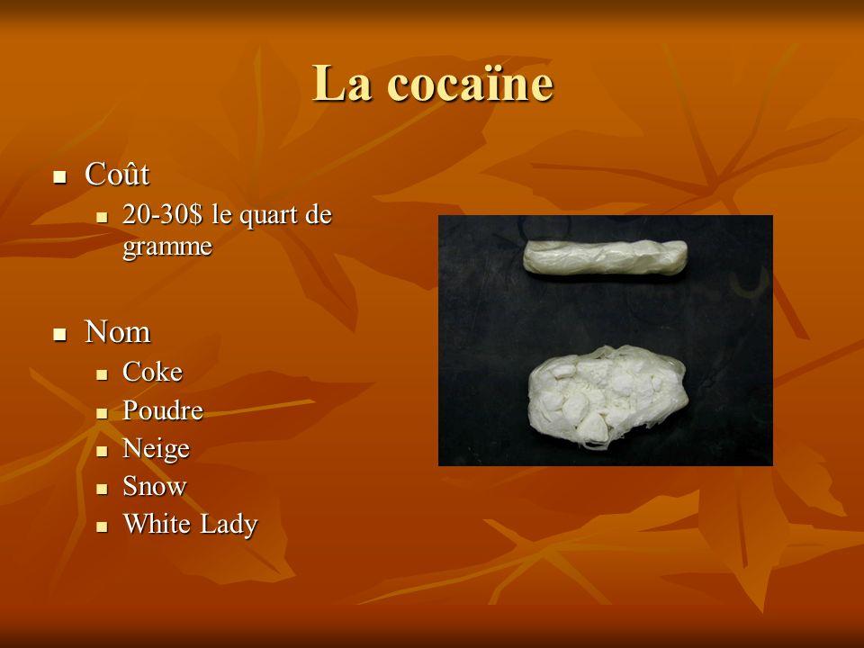 La cocaïne Coût Nom 20-30$ le quart de gramme Coke Poudre Neige Snow