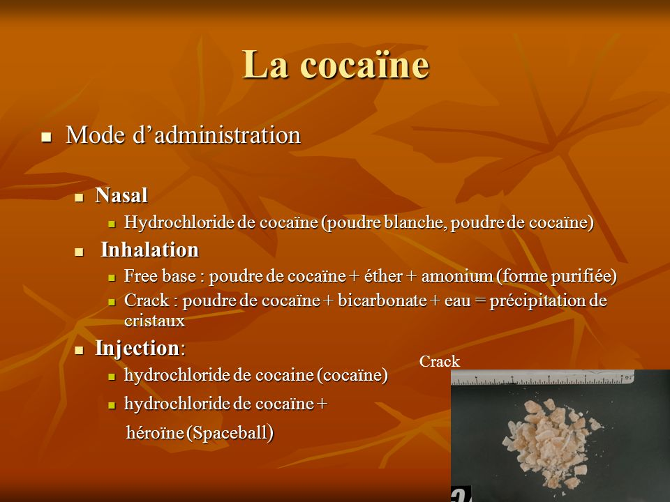La cocaïne Mode d'administration Nasal Inhalation Injection: