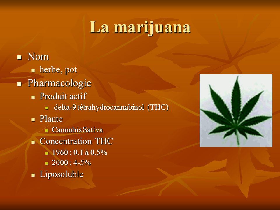 La marijuana Nom Pharmacologie herbe, pot Produit actif Plante
