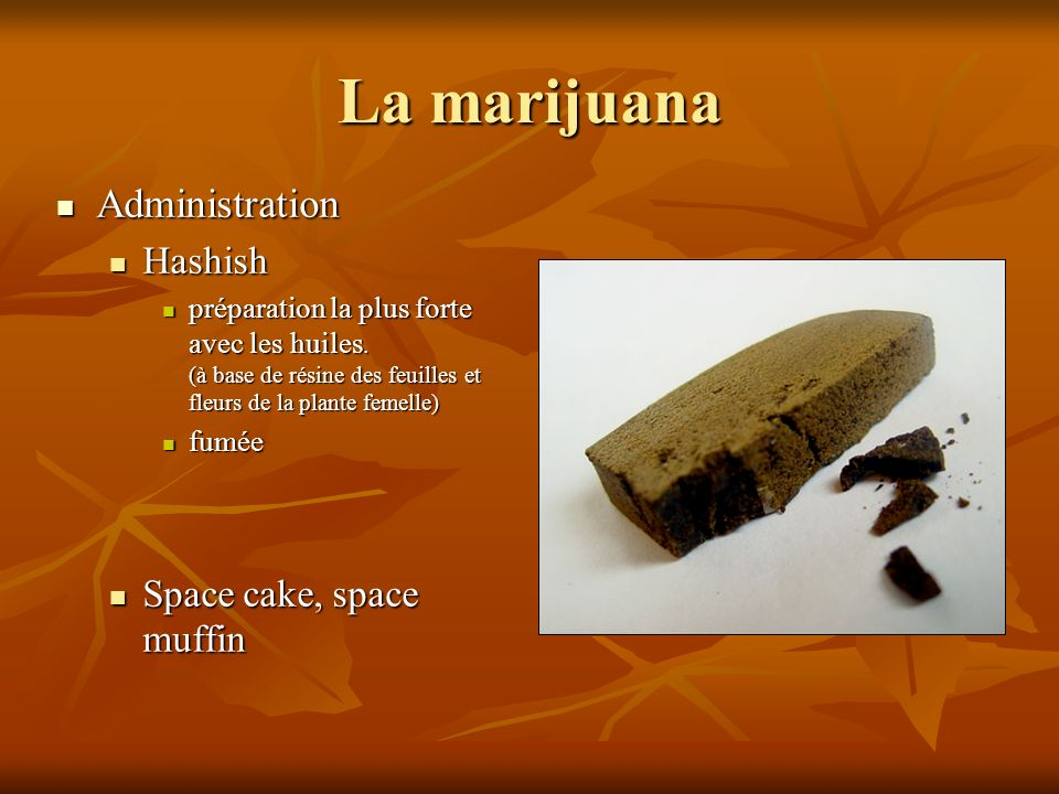 La marijuana Administration Hashish Space cake, space muffin