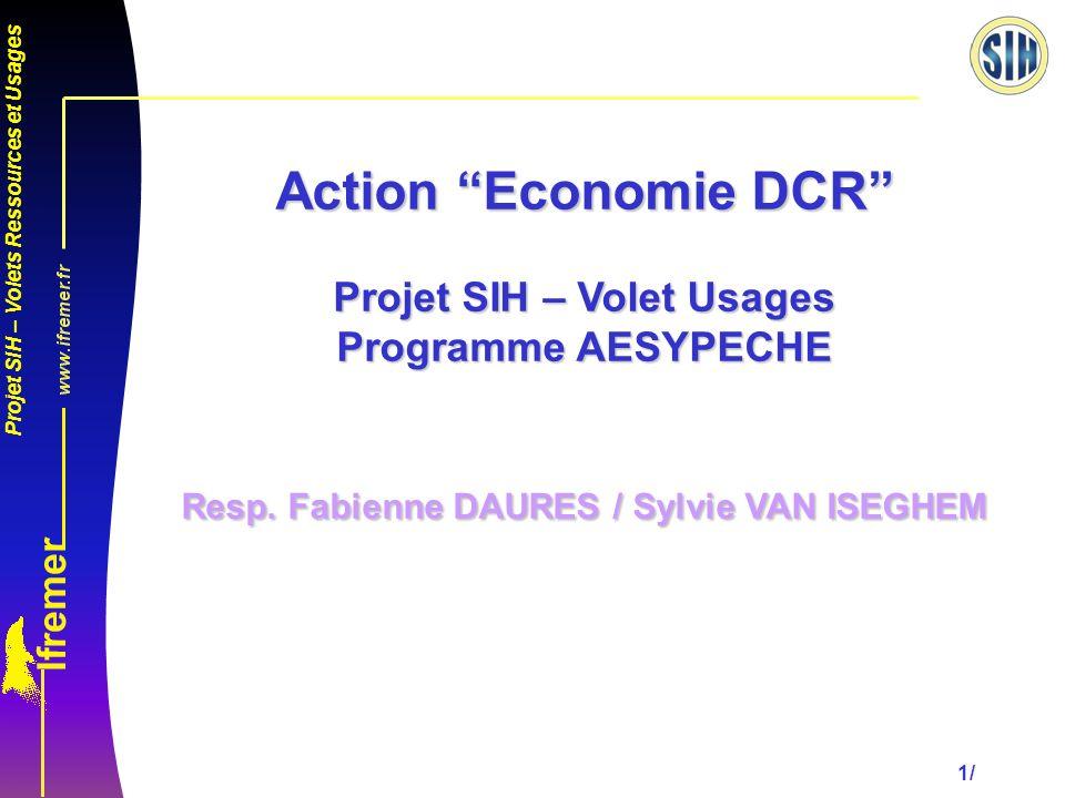 Action Economie DCR Projet SIH – Volet Usages Programme AESYPECHE Resp. Fabienne DAURES / Sylvie VAN ISEGHEM