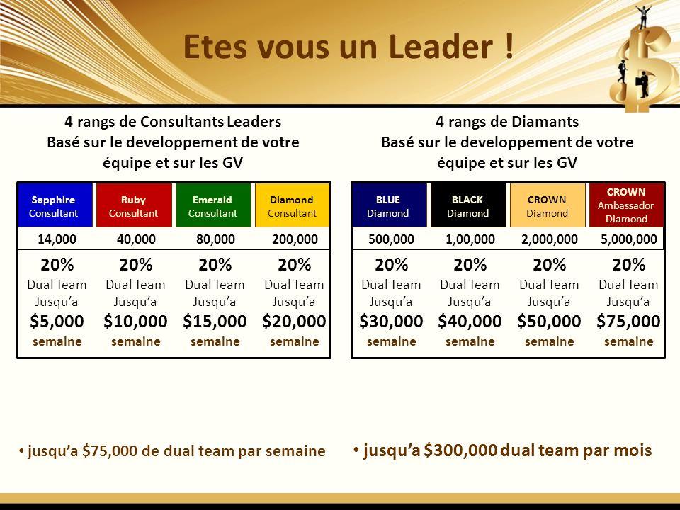 Etes vous un Leader ! 20% $5,000 semaine 20% $10,000 semaine 20%