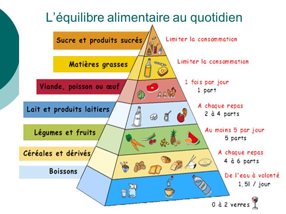 L'équilibre alimentaire au quotidien