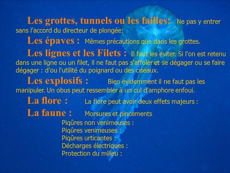 Les épaves : Mêmes précautions que dans les grottes.