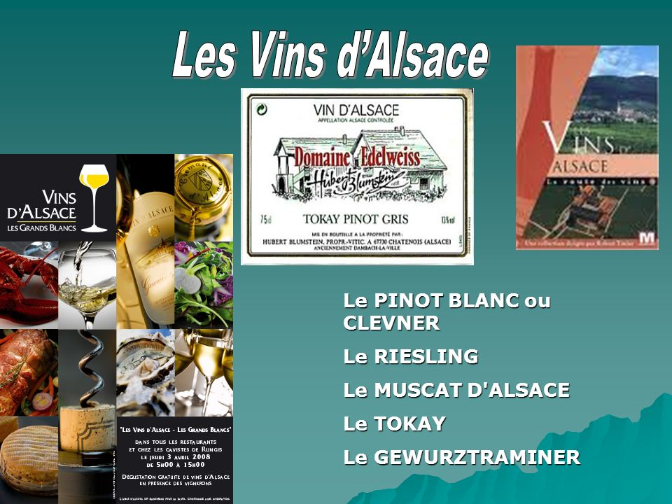 Les Vins d'Alsace Le PINOT BLANC ou CLEVNER Le RIESLING