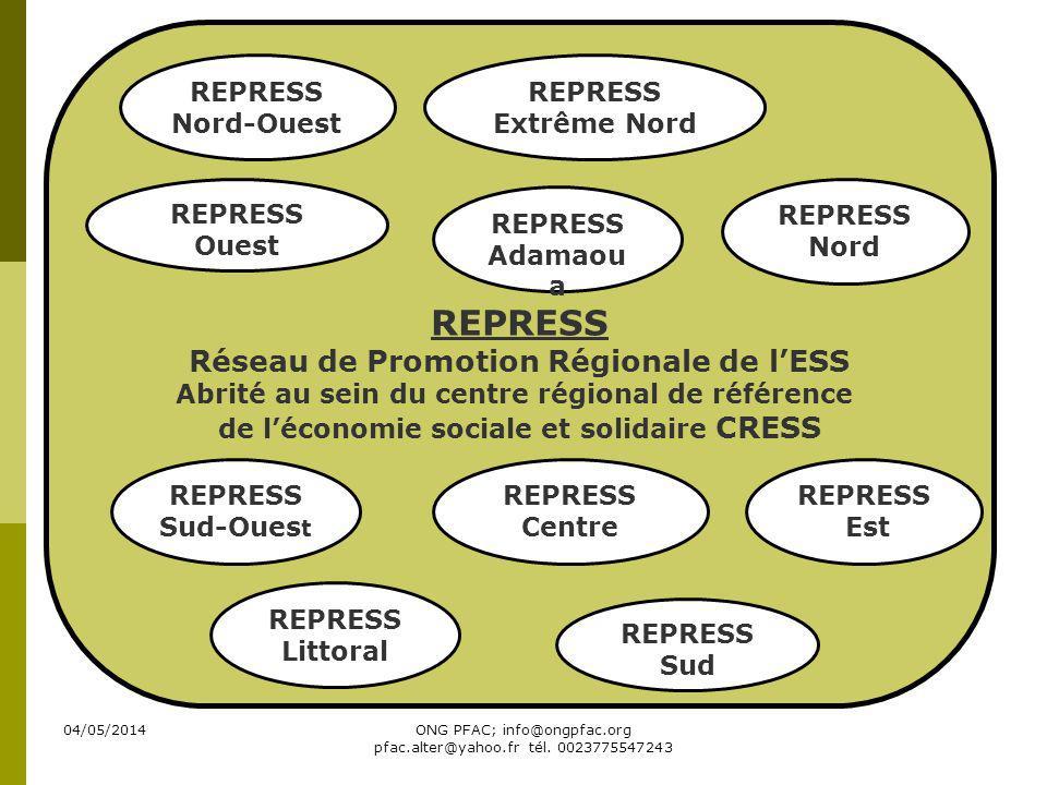 REPRESS Réseau de Promotion Régionale de l'ESS REPRESS Nord-Ouest