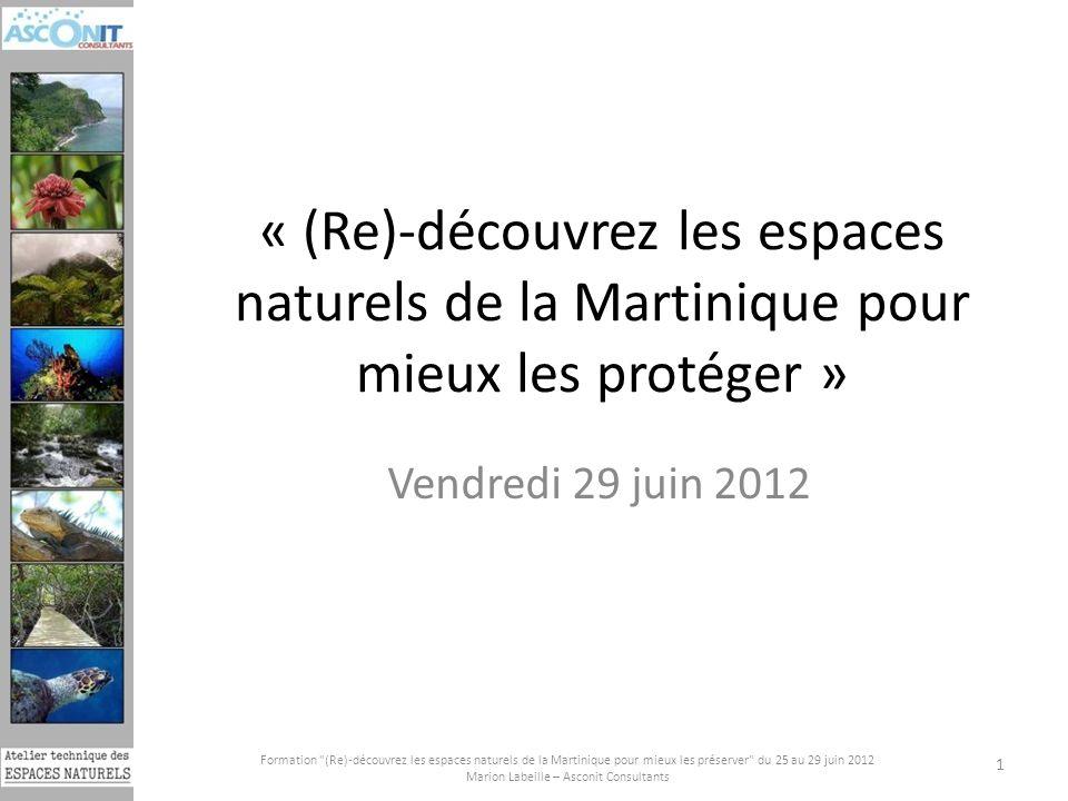Marion Labeille – Asconit Consultants