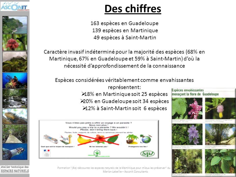 Des chiffres 163 espèces en Guadeloupe 139 espèces en Martinique