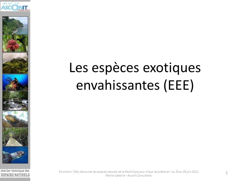 Les espèces exotiques envahissantes (EEE)