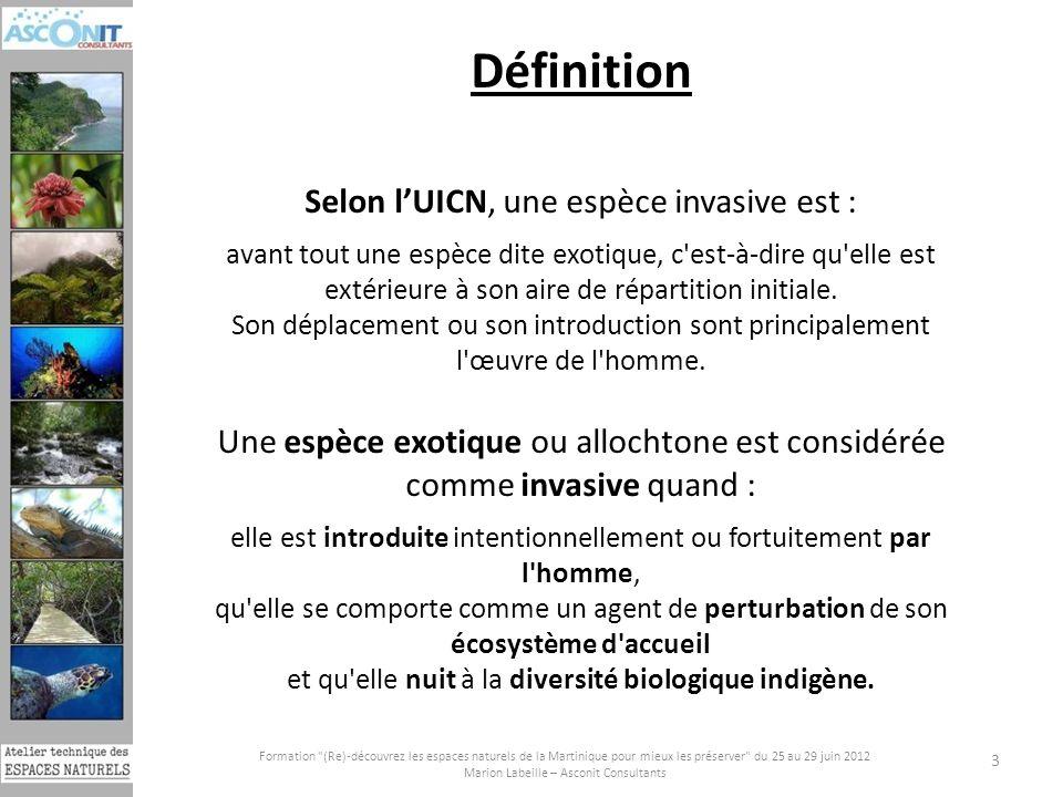 Définition Selon l'UICN, une espèce invasive est :