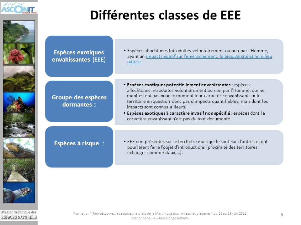 Différentes classes de EEE