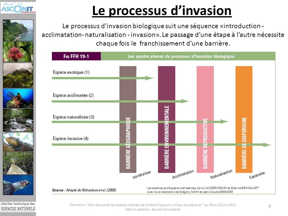 Le processus d'invasion