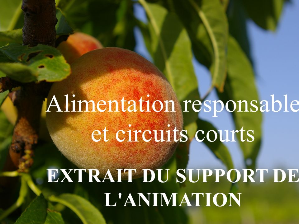 EXTRAIT DU SUPPORT DE L ANIMATION