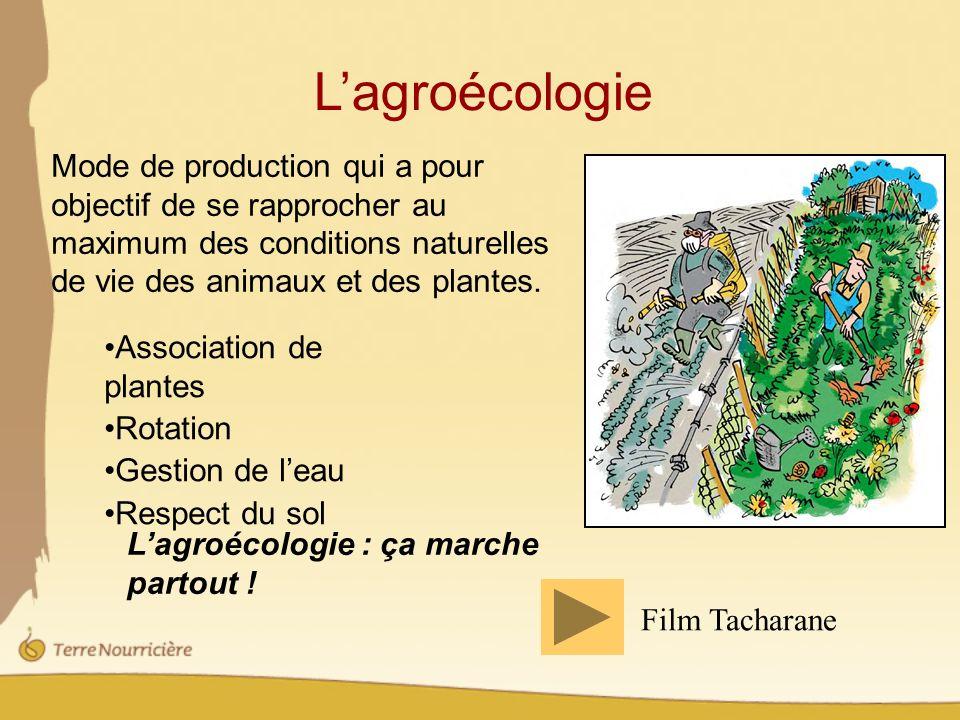 L'agroécologie Mode de production qui a pour objectif de se rapprocher au maximum des conditions naturelles de vie des animaux et des plantes.