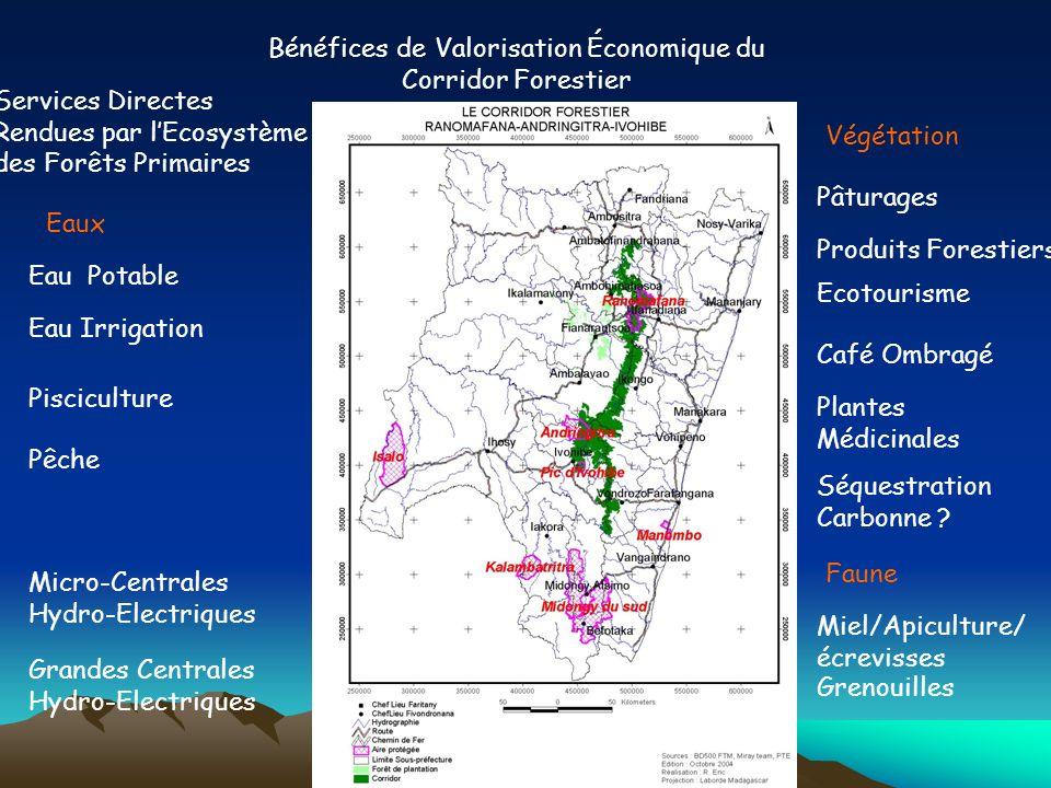 Bénéfices de Valorisation Économique du Corridor Forestier