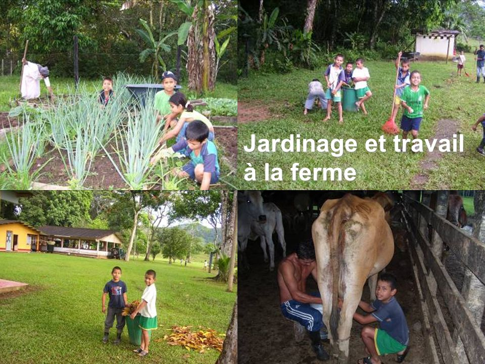 Jardinage et travail à la ferme