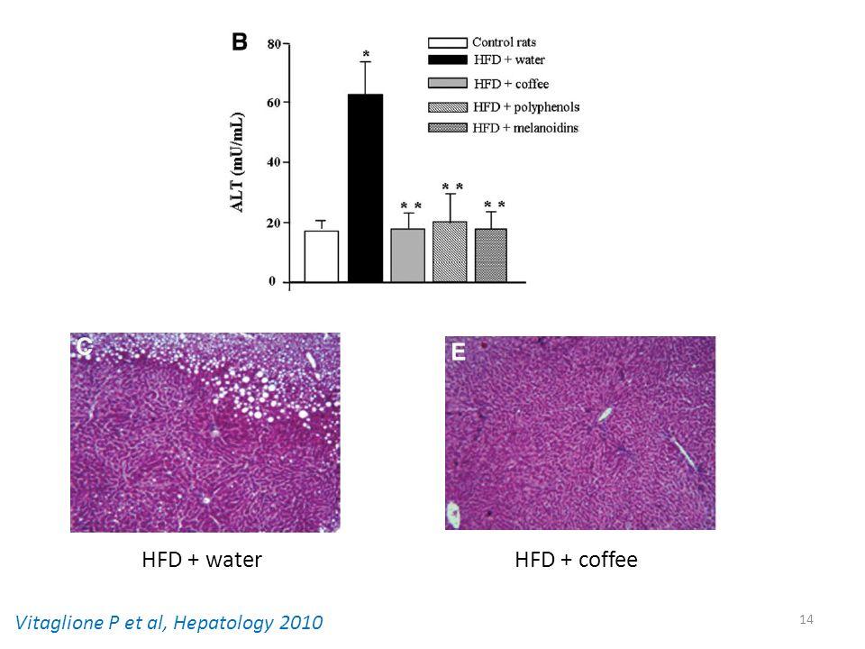 HFD + water HFD + coffee Vitaglione P et al, Hepatology 2010