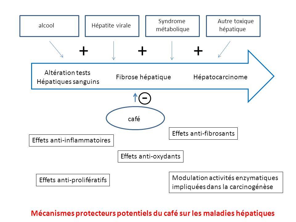 Syndrome métabolique. Autre toxique. hépatique. alcool. Hépatite virale. + + + Altération tests.