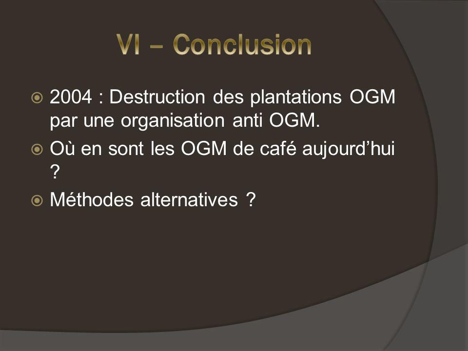 VI – Conclusion 2004 : Destruction des plantations OGM par une organisation anti OGM. Où en sont les OGM de café aujourd'hui