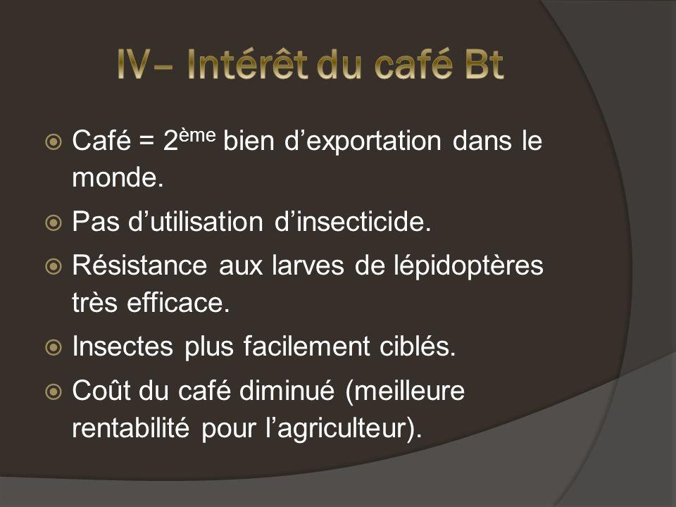 IV– Intérêt du café Bt Café = 2ème bien d'exportation dans le monde.