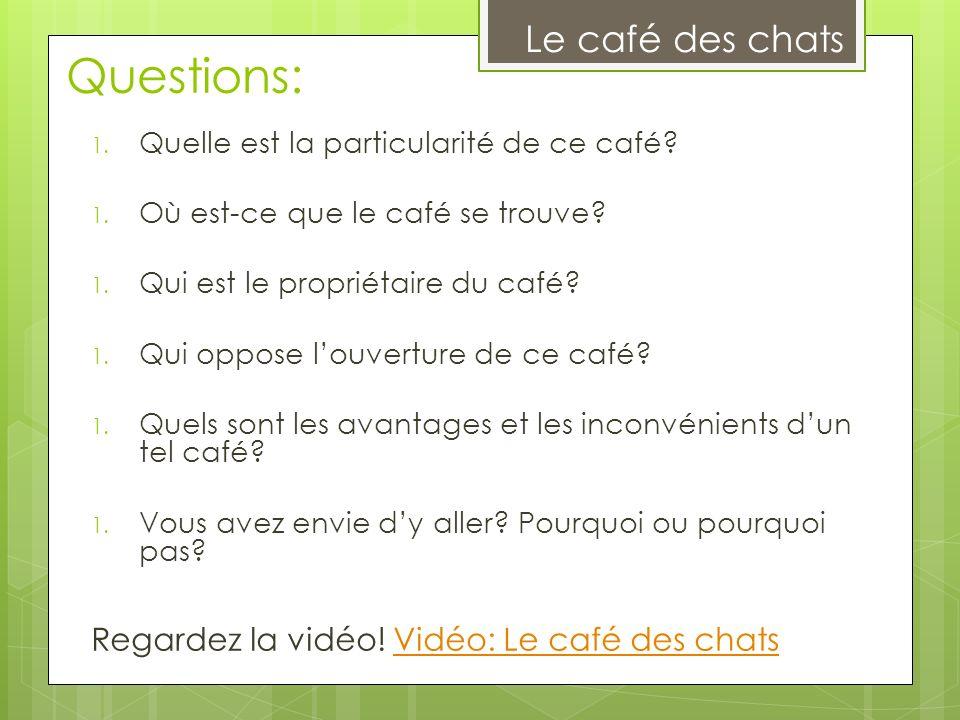 Questions: Le café des chats