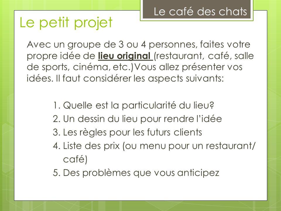 Le petit projet Le café des chats