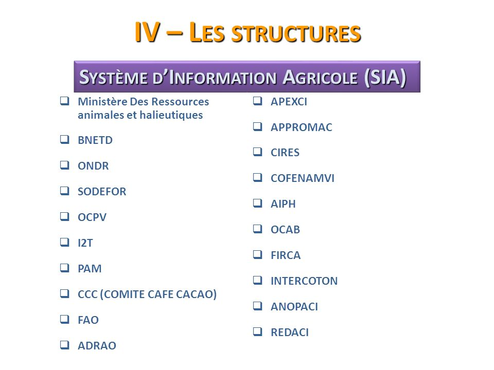 IV – Les structures Système d'Information Agricole (SIA)