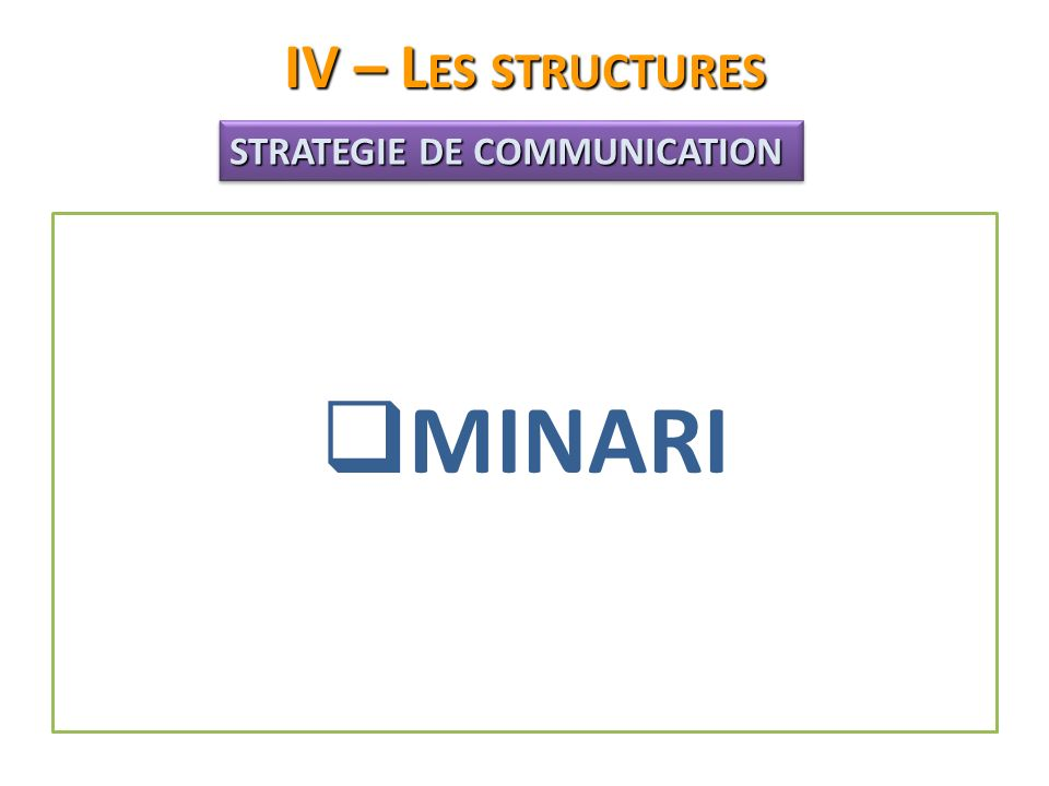 IV – Les structures STRATEGIE DE COMMUNICATION MINARI