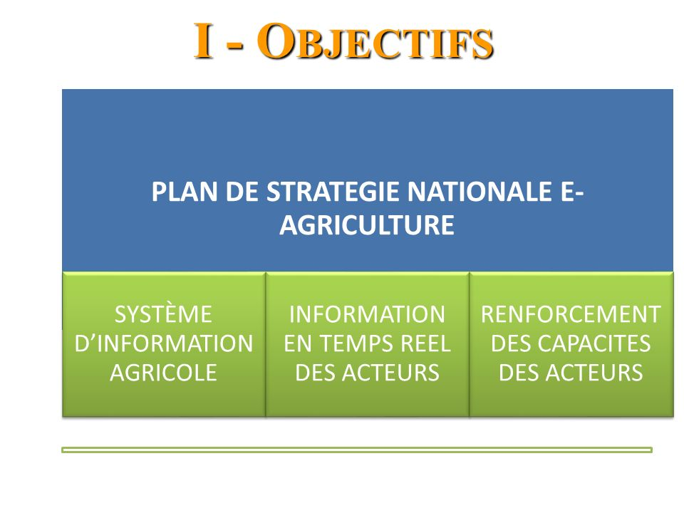 PLAN DE STRATEGIE NATIONALE E-AGRICULTURE