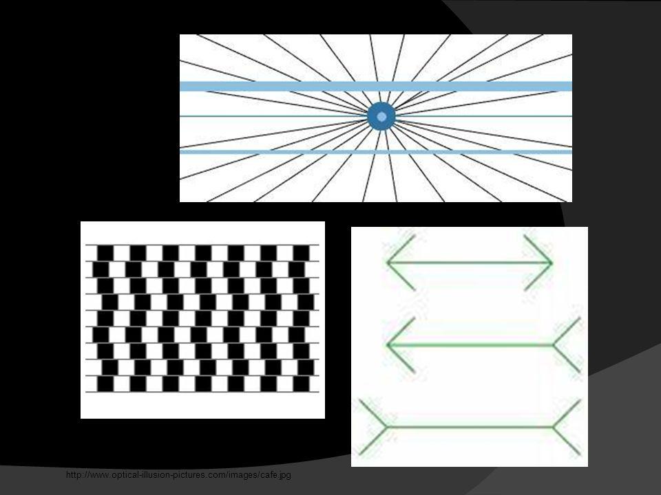 Voici le prochain défi : êtes-vous capable de déterminer comment droit ou longue les lignes sont En regardant l image à la gauche, essayez de classifier la longueur des lignes. En fait, elles sont de longueur identique! Les lignes grises à la gauche sont vraiment horizontales. Nous voyons toute l information vraie avec nos yeux, mais notre cerveau nous donne une mauvaise interprétation qui est causée par nos expériences antérieures.