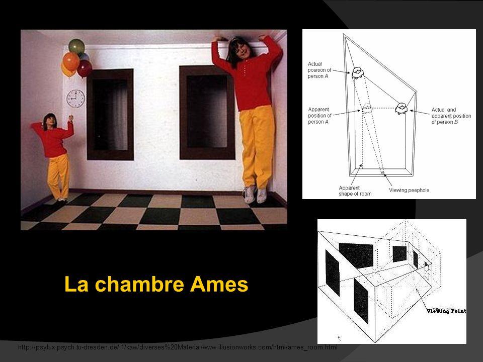 On peut combiner des illusions simples pour créer une illusion plus complexe. Les deux filles sont, en fait, de la même grandeur. Une fille est, en réalité, plus éloignée que l autre. Cependant, notre cerveau ne peut pas distinguer cette différence de distance parce que les angles de la salle semble être les angles droites et les murs semblent être parallèles. Les fenêtres ont été aussi modifiées pour renforcer cette illusion.