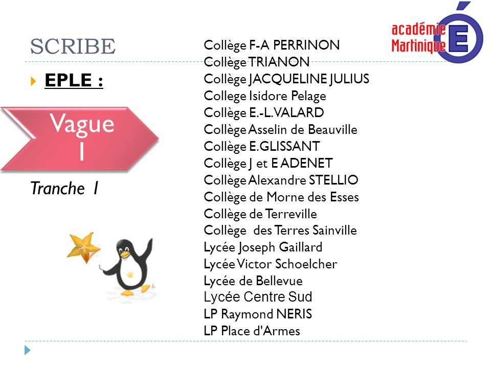 Vague 1 SCRIBE EPLE : Vague 1 Tranche 1 Collège F-A PERRINON