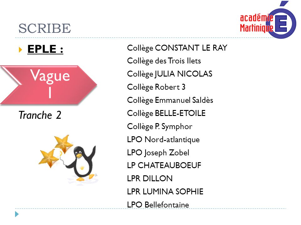 Vague 1 SCRIBE EPLE : Vague 1 Tranche 2 Collège CONSTANT LE RAY