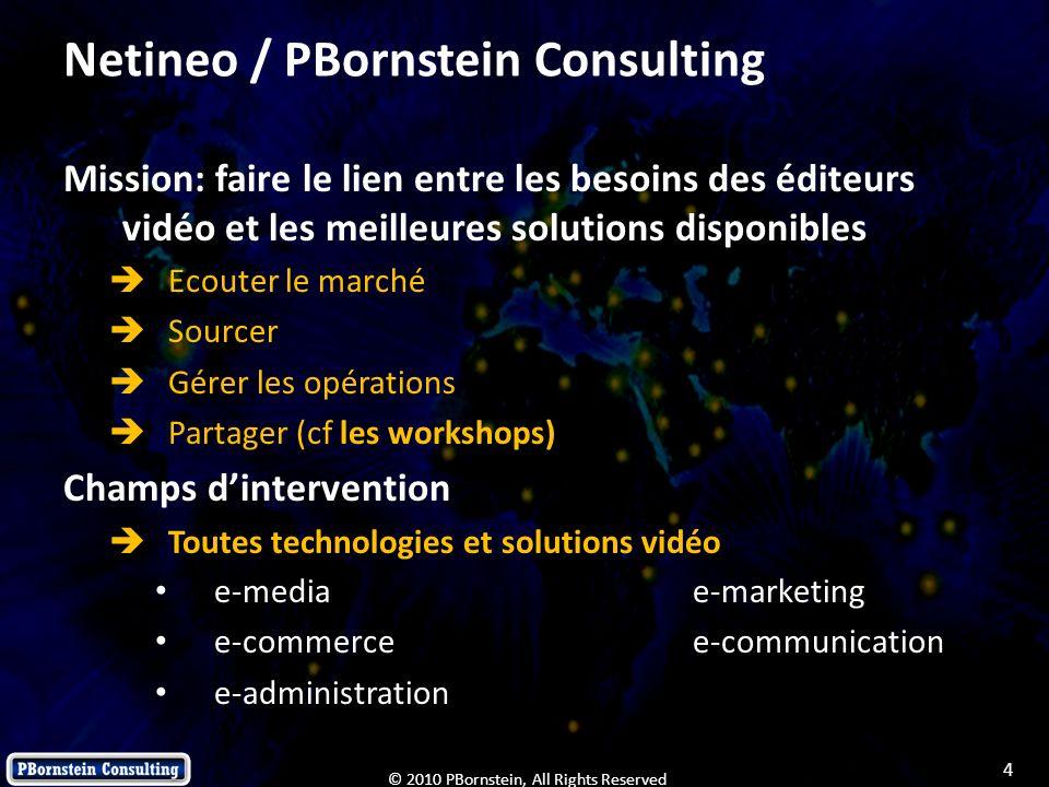 Netineo / PBornstein Consulting