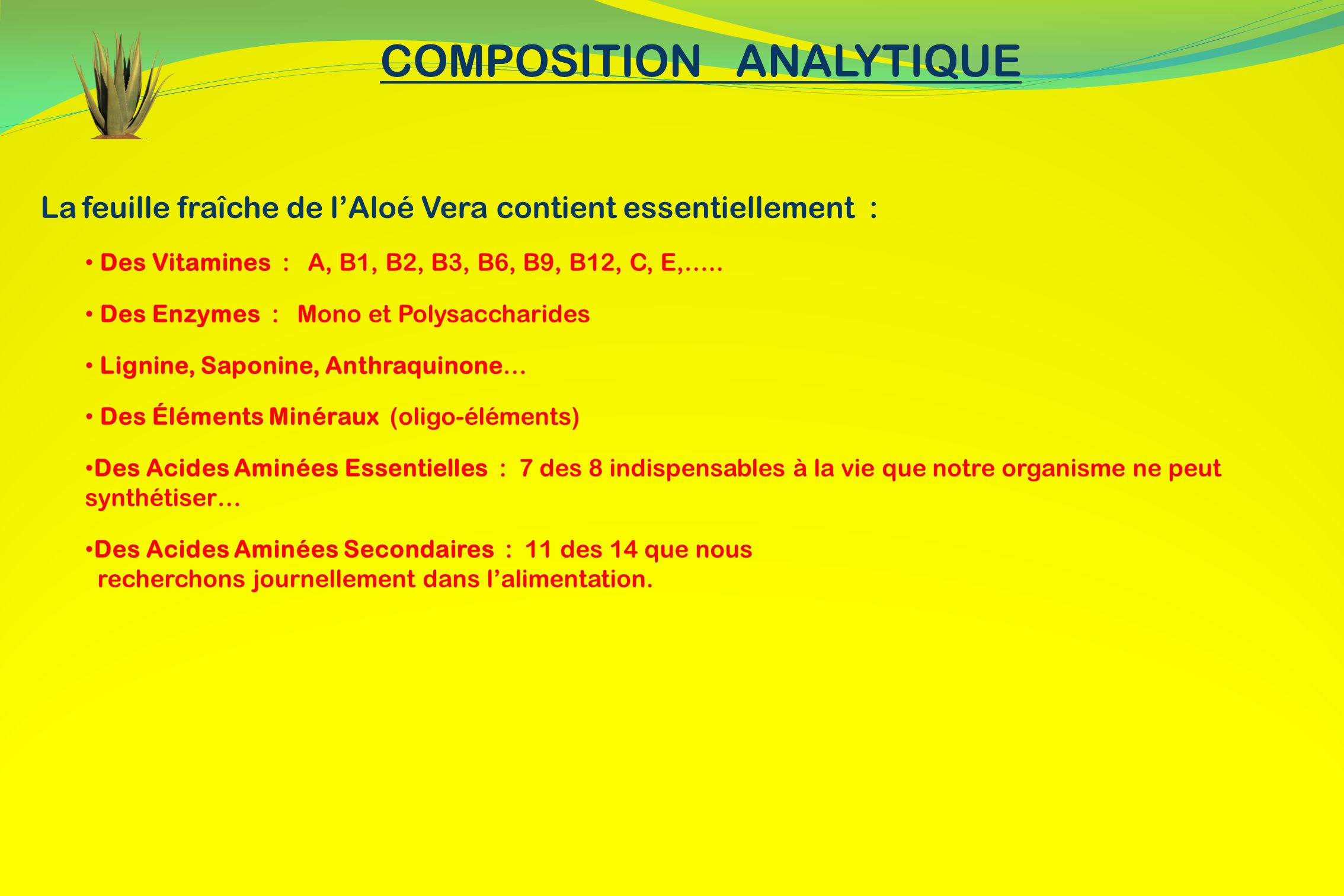 COMPOSITION ANALYTIQUE