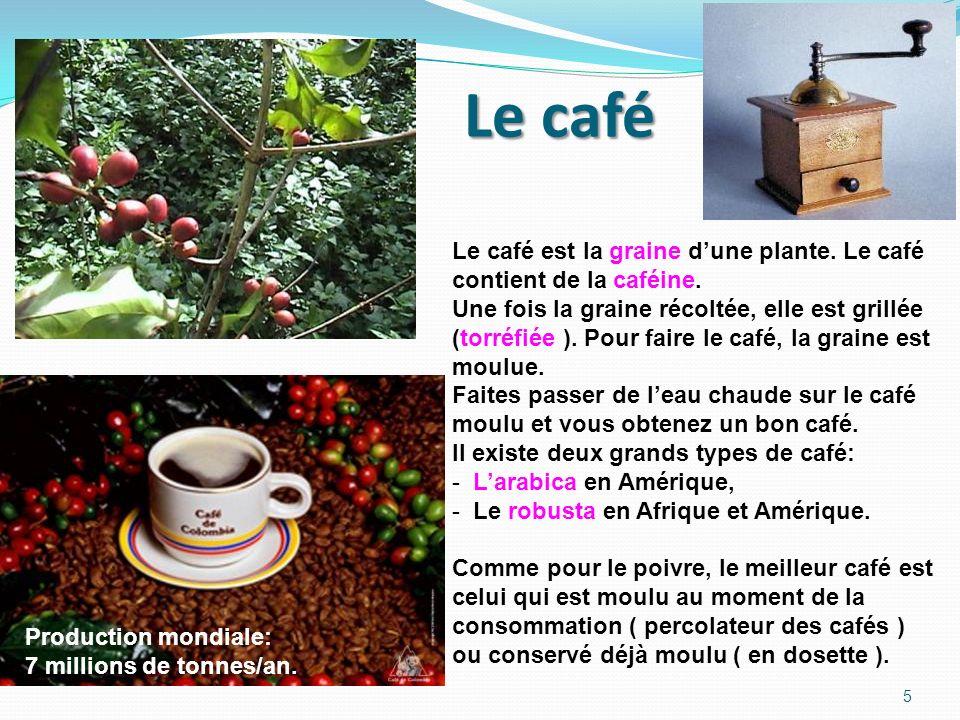 Le café Le café est la graine d'une plante. Le café contient de la caféine. Une fois la graine récoltée, elle est grillée.