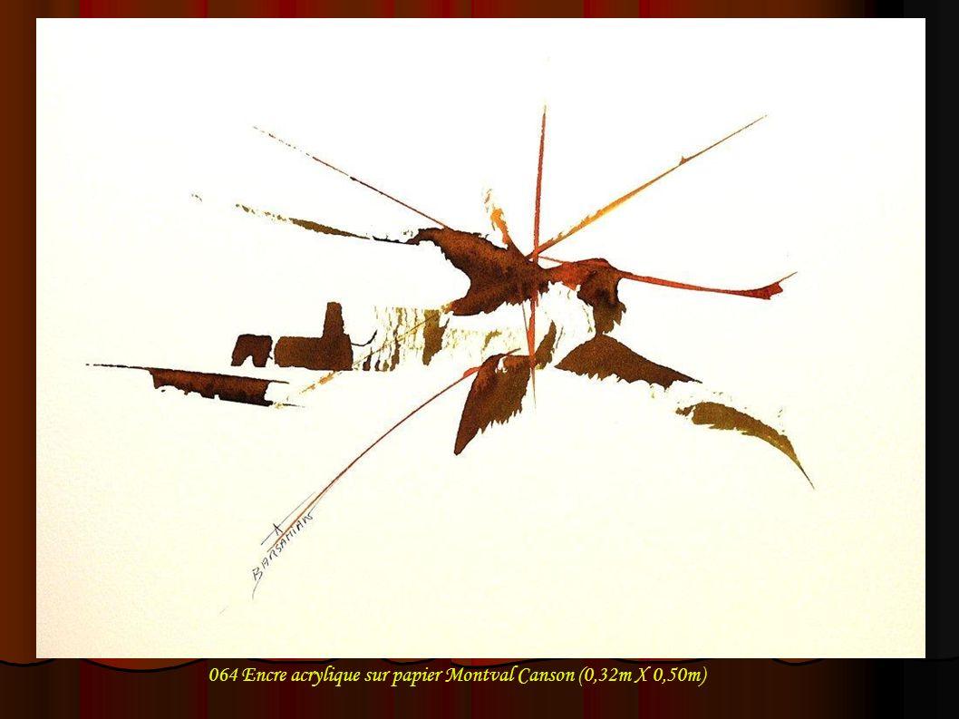 064 Encre acrylique sur papier Montval Canson (0,32m X 0,50m)