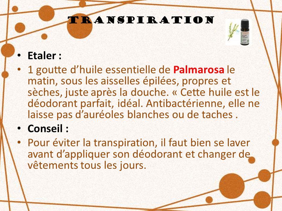 Transpiration Etaler :