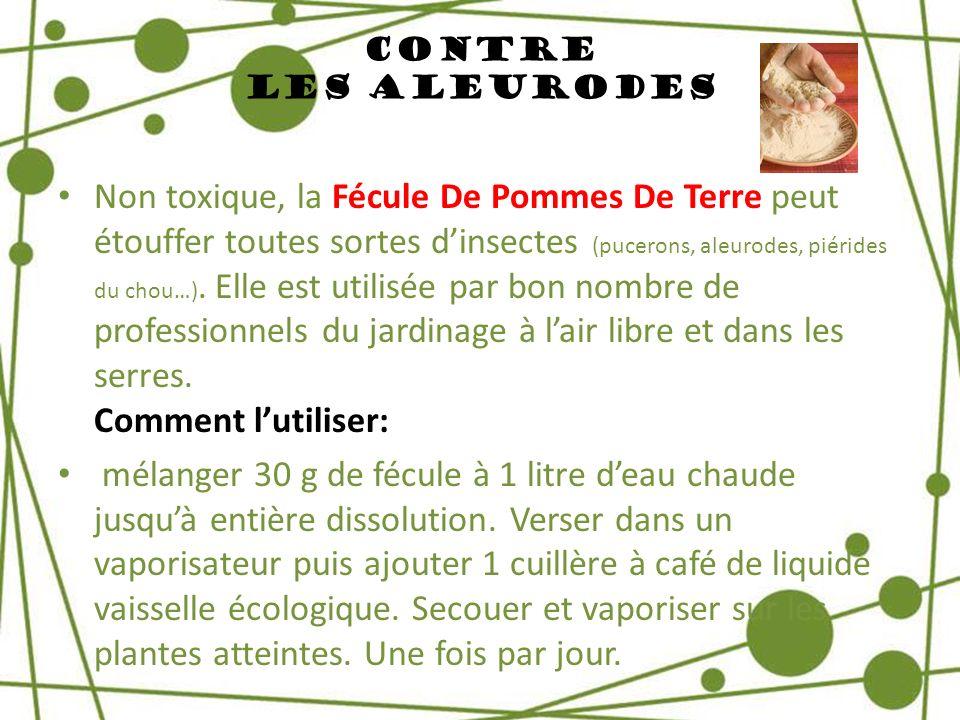 Contre Les Aleurodes